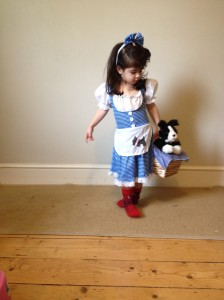 Wizard of Oz fancy dress, dorothy gale fancy dress,