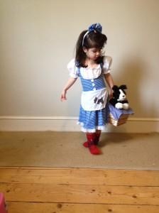 Wizard of Oz fancy dress, dorothy gale fancy dress,